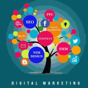 Digital Marketing Strategies and Assumptions